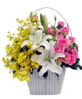 Gio hoa ly, lan, hong