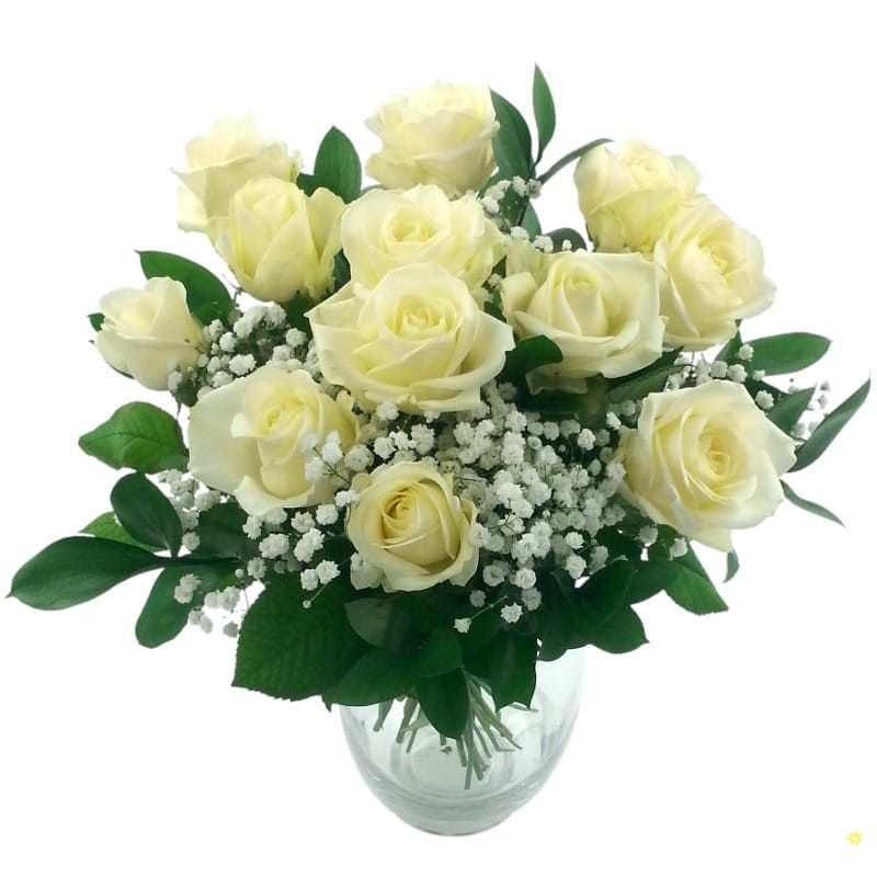 Hoa hong trang cam binh dep