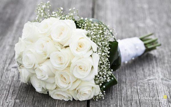 Bó hoa hồng trắng cầm tay cô dâu