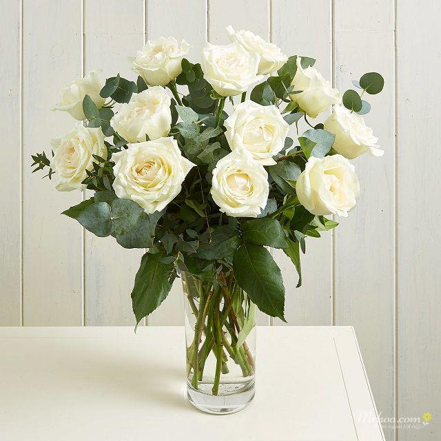 Bình hồng trắng