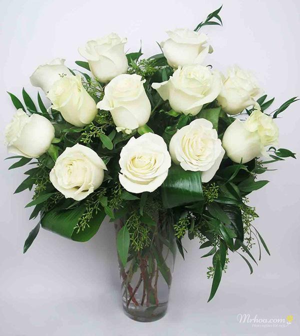 Hoa hồng trắng cắm bình đẹp nhất