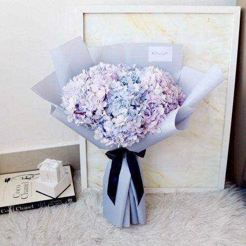 Hoa cẩm tú cầu giao tại nơi