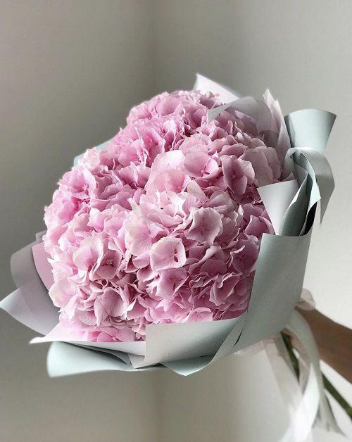 Bó hoa cẩm tú cầu hồng đẹp nhất