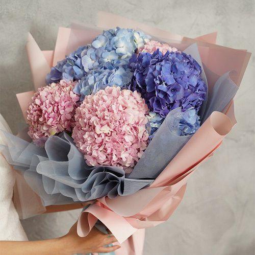 Bó hoa cẩm tú cầu đẹp nhất thế giới