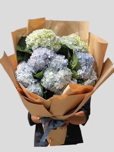 Bó hoa cấm tú cầu xanh dương