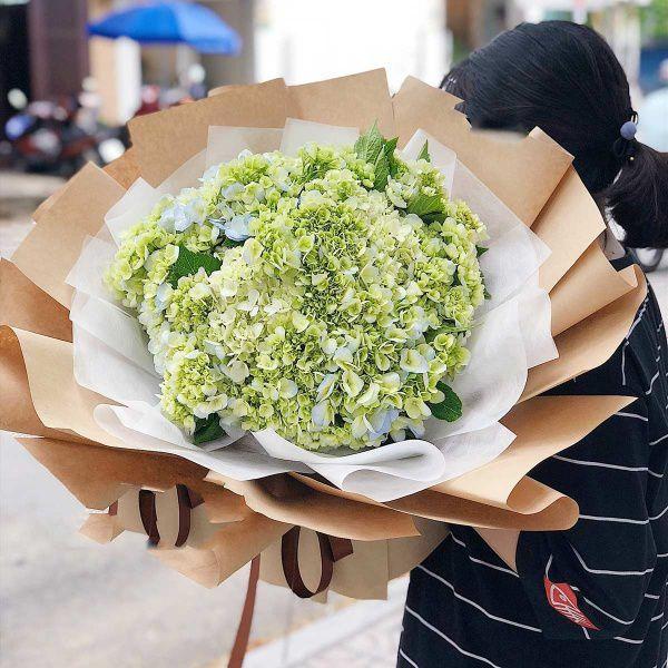 Bó hoa cẩm tú cầu xanh lá