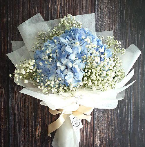 Hoa cẩm tú cầu giao tại nhà