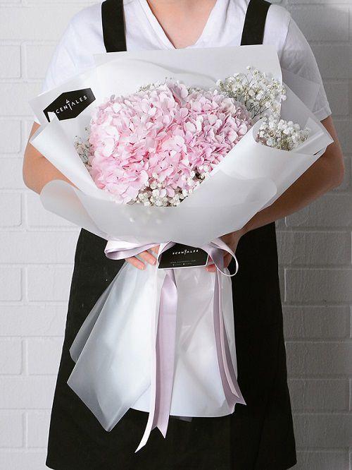 Bó hoa cẩm tú cầu tặng bạn gái đẹp nhất