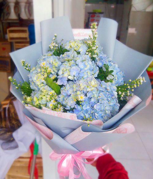 Hoa cẩm tú cầu tặng người yêu