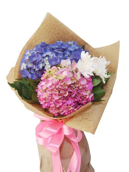 Hoa tặng bạn gái cẩm tú cầu
