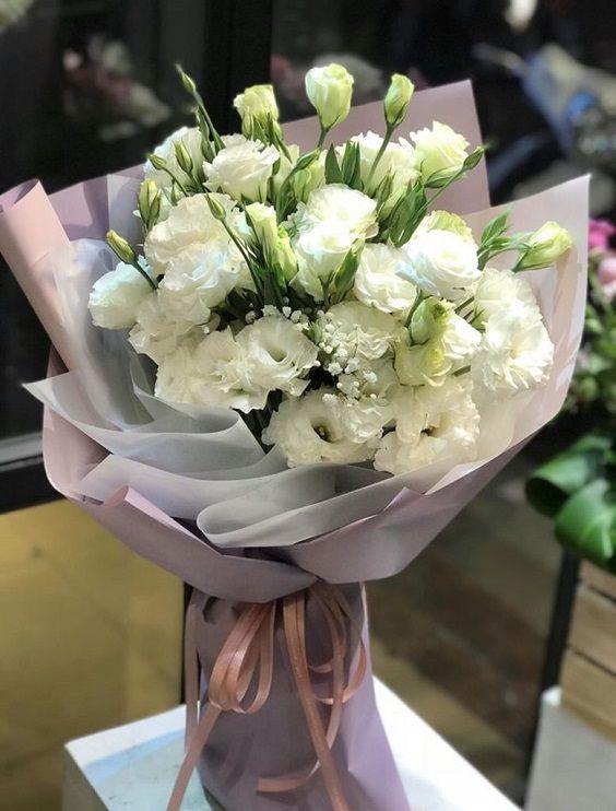 Bó hoa cát tường trắng