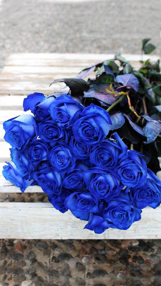 Bó hoa hồng sơn xanh đẹp nhất