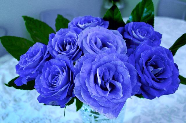 bo hoa hong xanh