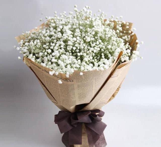 Bó hoa baby trắng đẹp