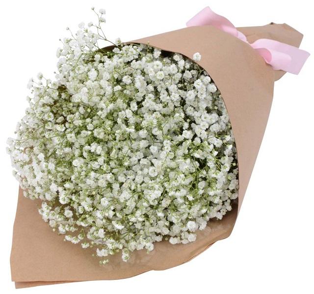 bo hoa baby giay bao