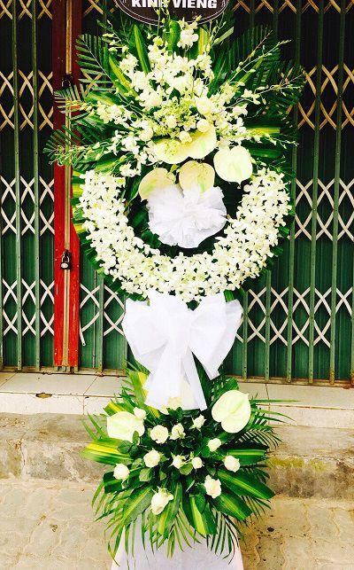 Hoa tang le phu vang hue