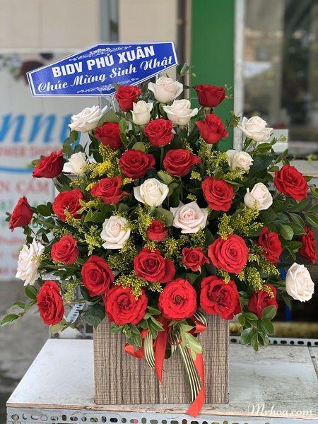 Điện hoa Quảng Bình