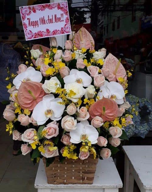 hoa tuoi cao lanh