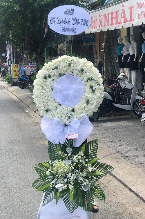 Hoa cuc trang dam tang