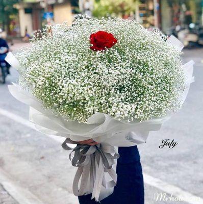 Hoa tặng bạn gái hoa baby