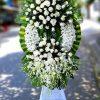 hoa tang le mau trang