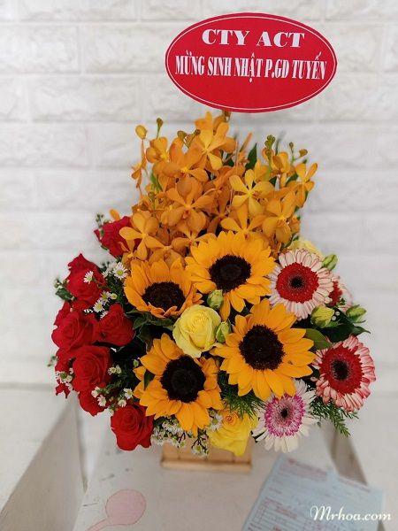 Tặng hoa ở nha trang