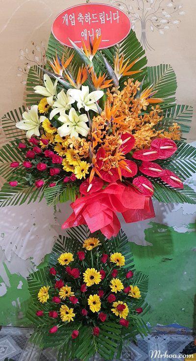 Hoa khai truong khanh hoa