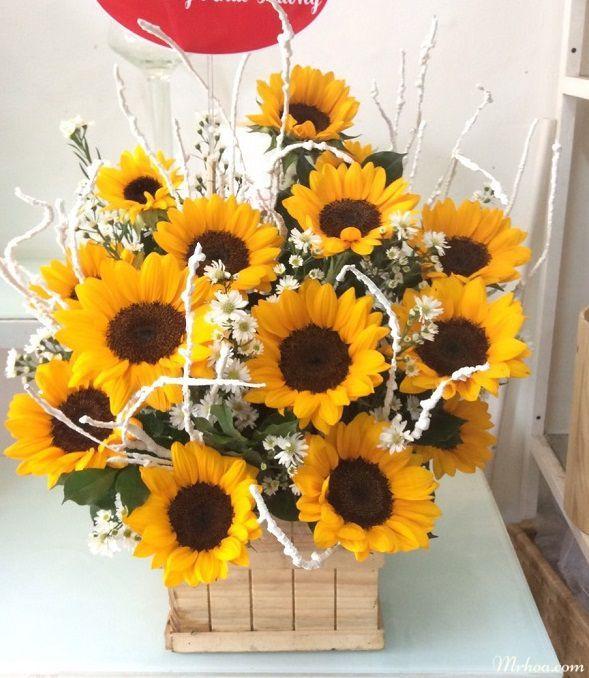 hoa tang sinh nhat y nghia
