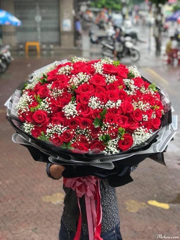shop hoa tuoi an lao hai phong