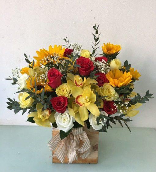 hoa tang chong