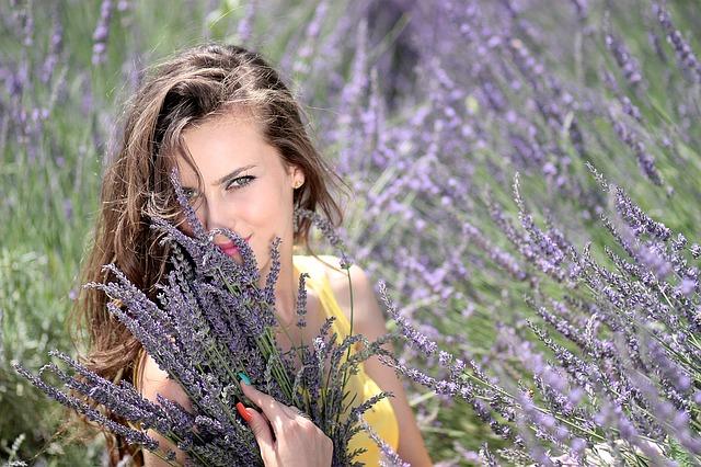 hoa to tinh ban gai