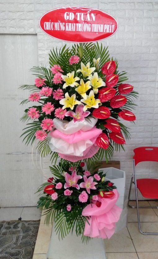 hoa hong mon tang khai truong