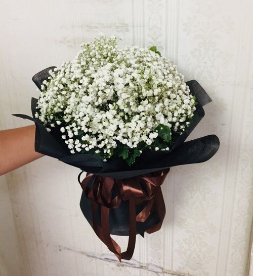 Bó hoa bi